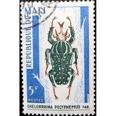 Mali, Wild Life, Insects, Chelorrhina Polyphemus, 1967 used VF