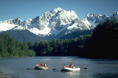 Alaska Attractions | alaska chilkat bald eagle preserve was created by the state of alaska ...