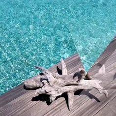 Vacation Memories, Need A Vacation, Travel Memories, Beautiful Photos Of Nature, Nature Photos, Nature Photography, Travel Photography, Best Short Stories, Mauritius Island