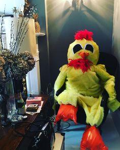 April 18 2016: @felixcoles Aaaaand that's a wrap! #chickenegg #chickencostume #artdepartment #productiondesigner #propmaking #prop #nikolajcosterwaldau #got #shortfilm #thatsawrap #jamesdarcy