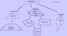 Geometry hierarchy of quadrilaterals worksheet my teachers pay quadrilateral family tree ccuart Image collections