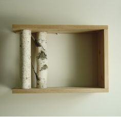 Gorgeous Birch Shelves
