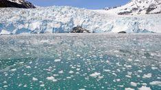 Kenai Fjords National Park, Alaska, USA - breathtaking trip!