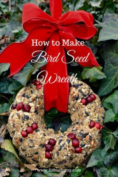 Dried Fruit and Berry Bird Seed Wreath DIY, how to make a wintery treat for our feathered friends. Bird Seed Crafts, Bird Seed Ornaments, Homemade Christmas Gifts, Homemade Gifts, Christmas Crafts, Christmas Time, Bird Feeder Craft, Bird Seed Feeders, Bird Seed Wreath Recipe