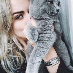 Miss this little rebel  #Pet #Britishshorthair #Catstagram