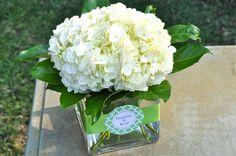 white hydrangea centerpiece. Debi Lilly ribbon.