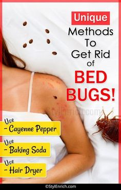 How To Get Rid of Bed Bugs : Let's See Unique Methods! Do you know how to get rid of bed bugs? Bed bugs are a real mess.Hence, we have discussed important home remedies which can help you to get rid of bed bugs. Bed Bug Remedies, Home Remedies, Bed Bugs Pictures, Bed Bug Bites Pictures, Bed Bug Trap, How To Get Rid, How To Remove, Rid Of Bed Bugs, Bed Bugs Treatment