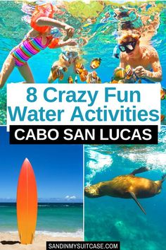 8 Crazy Fun Water Activities Cabo San Lucas. Hey beach babes! See these awesome water activities in Cabo San Lucas! Go whale watching, surfing, snorkeling and more! | Best sunset cruises in Cabo San Lucas | Surfing in Cabo San Lucas | Cabo watersports