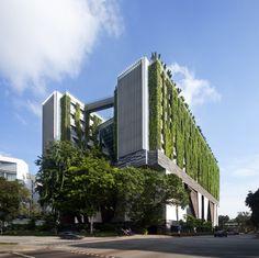 El proyecto es para una escuela especializada en las artes visuales y escénicas, situada en el corazón del barrio cívico de Singapur, en la entrada al distrito de artes y entretenimiento. El diseño es un nuevo paradigma, un gran objeto denso, perforado para otorgar luz y ventilación natural a todas las áreas.