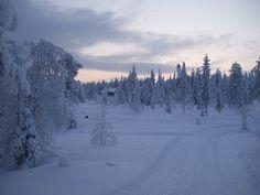 finland // snow