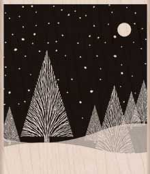 Talvinen kuutamoyö