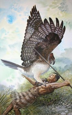Harpagornis moorei attacks an early Māori settler in the forests of ancient New Zealand by Peter Schouten Prehistoric Wildlife, Prehistoric Creatures, Wildlife Art, Sea Whale, Extinct Animals, Extinct Birds, Black And White Birds, Jurassic Park World, New Zealand