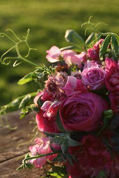 Photo by Erin Benzakein / Floret Flower Farm on Flickr.