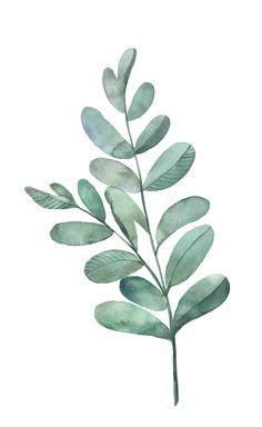 Hochwertig Watercolor Leaf