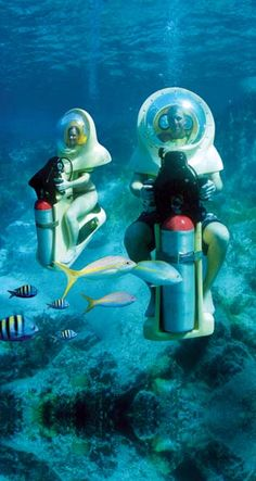 The Bob (breathing observation bubble) are scooters in St. John, Virgin Islands. A diver stays with you as you tour 17 ft under water.