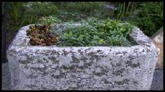 Hypertufa Trough Garden Art