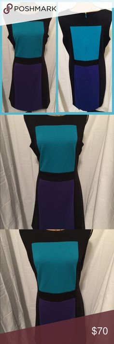 Sleeveless Color Block Sheath Dress NWT classy Calvin Klein color block Sheath dress. Sleeveless. Polyester/Rayon/Spandex mix. Midi length. Zippered back. Crew neckline. Great for work or a night out. New with tags. Black, teal, and dark blue color. Size 14. Calvin Klein Dresses Midi