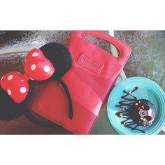 Our Tiki Mini went to Disneyland to meet Minnie Mouse! #createwhereyouwant #disneyland