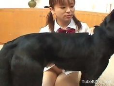 Asian zoophile is a nice dog whore with dirty minds