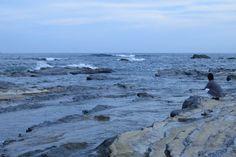 岩場のある海岸ー千倉