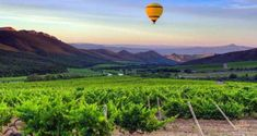 Hot Air Ballooning in Cape Town | Balloon Rides | Near Me - Dirty Boots Balloon Rides, Hot Air Balloon, Balloon Flights, Made In Heaven, Summer Months, Cape Town, South Africa, Sunrise, Balloons
