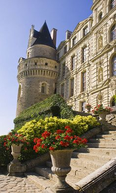 """Steps to Chateau de Brissac,Loire Valley,France. I like to imagine the Malfoys have a """"small"""" chateau in France where they stay to get away from Britain Places Around The World, Oh The Places You'll Go, Places To Travel, Places To Visit, Around The Worlds, Beautiful Castles, Beautiful Buildings, Beautiful Places, Loire Valley France"""