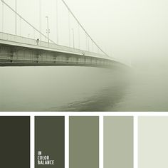 Strict and restrained color combination, including the warm tones of gray, which are a form of protective shades of varying intensity - from almost black to shades of gray and green tea light greenish tone. This palette appropriate to this is to use clothing office staff to comply with the dress code