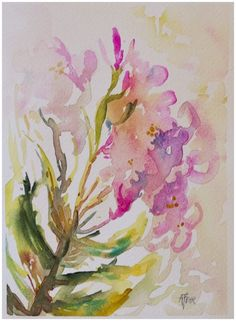 oleander | Angela Fehr watercolours