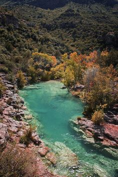 Fall color at Fossil Creek