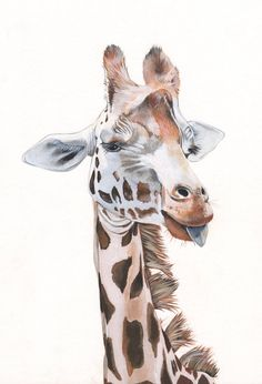 Giraffe painting print of acrylic painting 5 by 7 by LouiseDeMasi