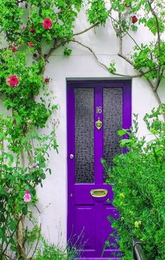 25 fabulous front doors: Get inspired to create a statement entry of your own. Click through to see our round up of 25 of the most beautiful front door colours Bright Front Doors, Purple Front Doors, Beautiful Front Doors, Front Door Paint Colors, Purple Door, Painted Front Doors, Unique Doors, Door Entryway, Entrance Doors