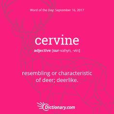 Dictionary.com's Word of the Day - cervine - resembling or characteristic of deer.
