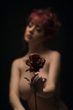 Rose - David Kelley Artistiques