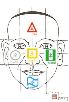 Face mapping uses 5 specific zones of the face, which correspond with particular organ groupings, to identify imbalances and dysfunctions in your body… Chinese Face Reading, Severe Headache, Chinese Astrology, Face Mapping, Brain And Heart, Beat Cancer, Traditional Chinese Medicine, Look In The Mirror, Health Facts
