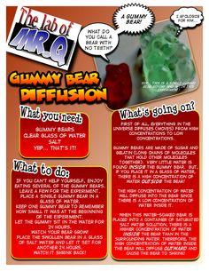 gummybearscienceexperiment   Gummy Bear Diffusion
