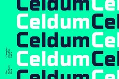 Celdum, a modern geometric type family, constructed from a rectangular grid. Smooth, precise curves meet horizontal and vertical lines to create a monoline design with no apparent contrast. Each letter shape has unique subtleties creating a purposeful type family suited to text and branding scenarios within mobile applications, video games and other interactive software. Details include six weights with italics, 460 characters, five variations of numerals, manually edited kerning and…
