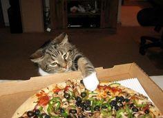 Pizza Hut...pizza to go