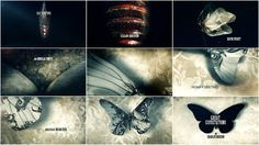 Opening sequences for the movie Great Expectations. The scenes move from a caterpillar-like insect evolving into a butterfly.