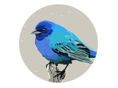 Winter Birds - blue designed by Patricia Martinez . the global community for designers and creative professionals. Decorative Plates, Birds, Winter, Illustration, Creative, Artwork, Blue, Inspiration, Design