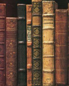 Schöne alte Bücher, old Books