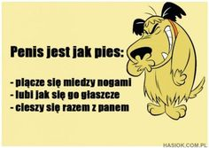 Penis jest jak pies True Quotes, Best Quotes, Funny Quotes, Memes, Animal Jam, Smile Everyday, Man Humor, True Colors, Haha