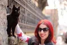 Venoma Fashion Freak: Kitten + New mascara + New promo