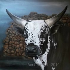 Nguni Oil on canvas 60cm x 60cm SOLD Cow Art, Art Techniques, Cattle, Oil On Canvas, Moose Art, Africa, Paintings, Drawings, Animals