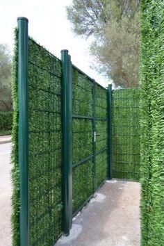 DIY Fences Ideas Easy and Cheap Inspirations to Try Fence, Roof garden, Garden, Terrace garden, Cheap Privacy Fence, Privacy Fence Designs, Backyard Privacy, Backyard Fences, Backyard Landscaping, Garden Fences, Privacy Trees, Cheap Fence Ideas, Privacy Hedge