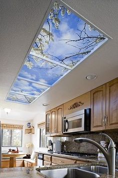 Image result for window ceiling