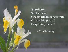 ... i-meditate-so-concentrate- <3<3 www.EdensCorner.Com  <3<3