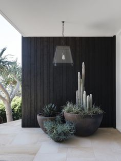 Palm Beach Home by CM Studio A collaborative coalition between CM Studio, their client and more, this picturesque Sydney home offers a sophisticated approach to seaside life. Modern Landscaping, Outdoor Landscaping, Front Yard Landscaping, Backyard Patio, Outdoor Gardens, Black Rock Landscaping, Modern Landscape Design, House Landscape, Plantas Indoor