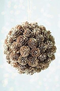 ~ Pinecone Pomander ~ bake it after its boiled in vanilla and cinnamon or other spices....