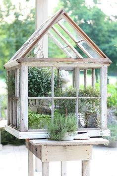 Repurposed Windows made into a Lovely Greenhouse from erins art and gardens: garden folly (old windows and shutters are available at the Habitat for Humanity ReStores) Home Greenhouse, Small Greenhouse, Greenhouse Gardening, Greenhouse Ideas, Old Window Greenhouse, Container Gardening, Portable Greenhouse, Greenhouse Wedding, Miniature Greenhouse