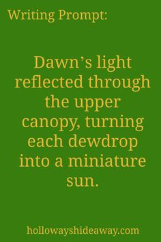 settings-writing prompts-September 2016-Dawns light reflected through the upper…